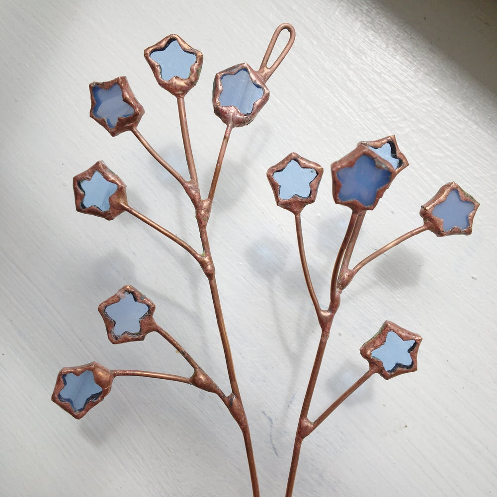 Image of Forget-Me-Not Posie no.1