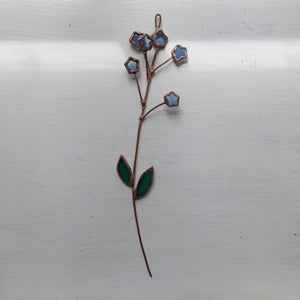 Image of Forget-Me-Not Posie no.2