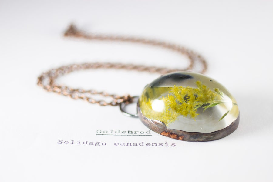 Image of Goldenrod (Solidago canadensis) - Copper Plated Necklace #1