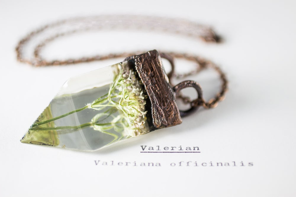 Image of Valerian (Valeriana officinalis) - Small Copper Prism Necklace #3