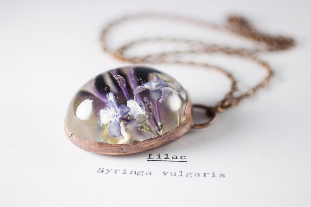 Image of Lilac (Syringa vulgaris) - Copper Plated Necklace #4