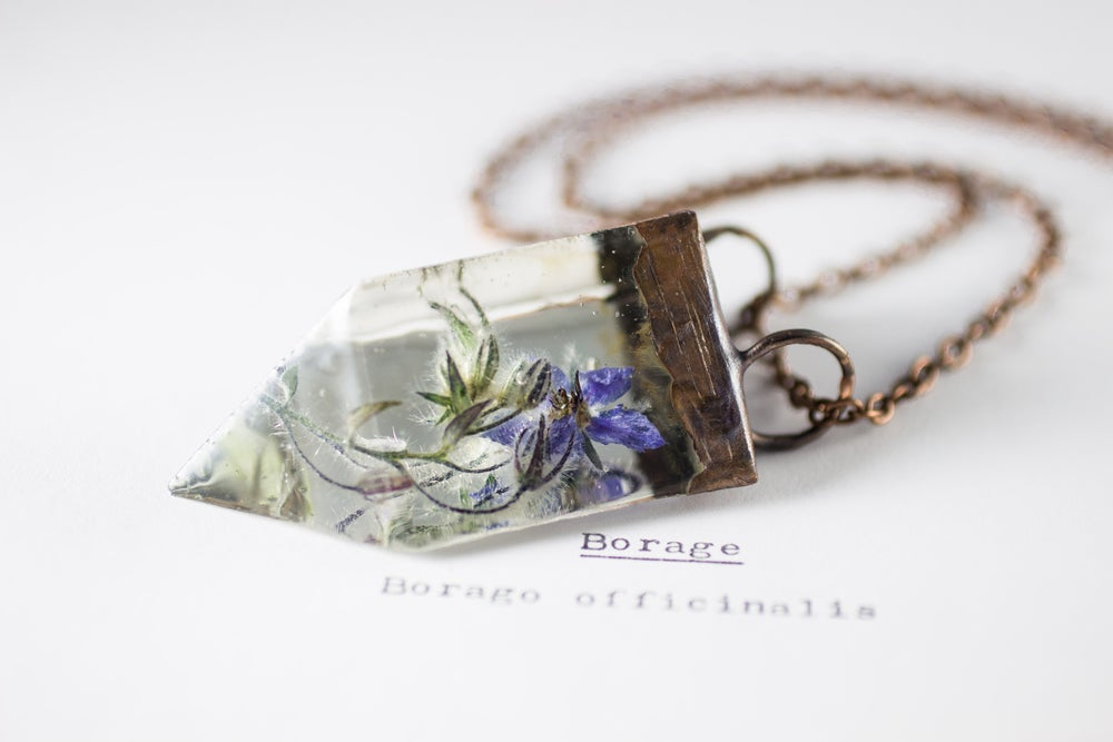 Image of Borage (Borago officinalis) - Small Copper Prism Necklace #1