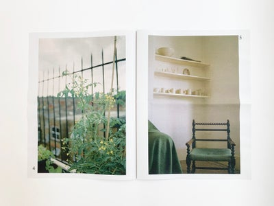 Image of Olivia Fiddes : Soft Soils published by Poetic Pastel Press