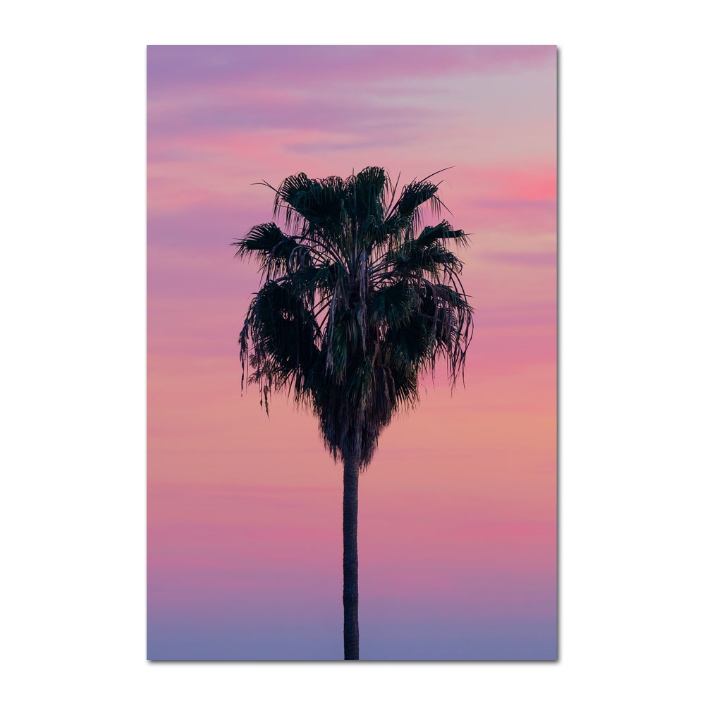 Image of BEACH PALM - PINK