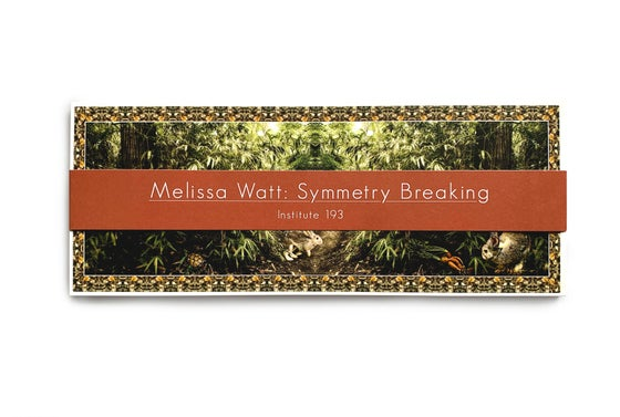 Image of Melissa Watt: Symmetry Breaking Postcard Set