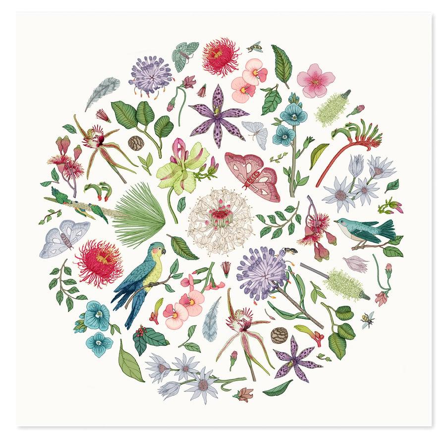 Image of Wildflower Season