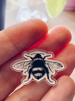 Image of Acrylic Bee Pin