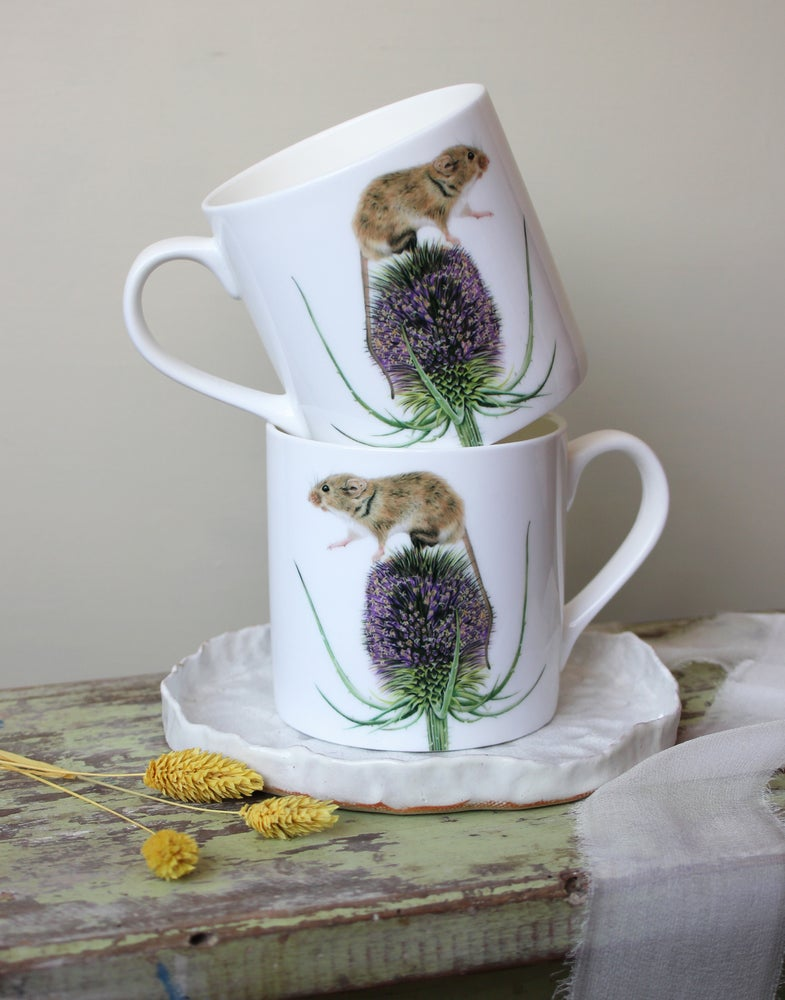 Image of 'One Small Step For Mice' Mug