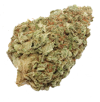Image of Maui Waui - Sativa
