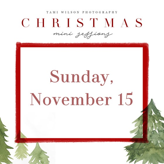 Image of Christmas Mini Session - Sunday, November 15 - deposit
