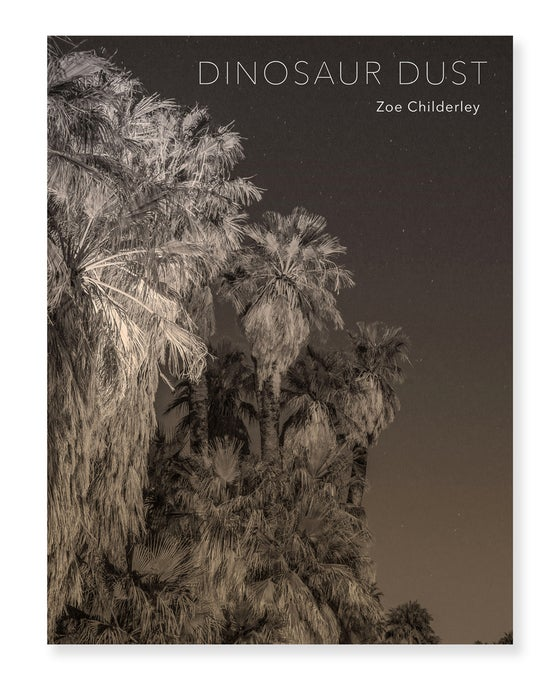 Image of Zoe Childerley - Dinosaur Dust