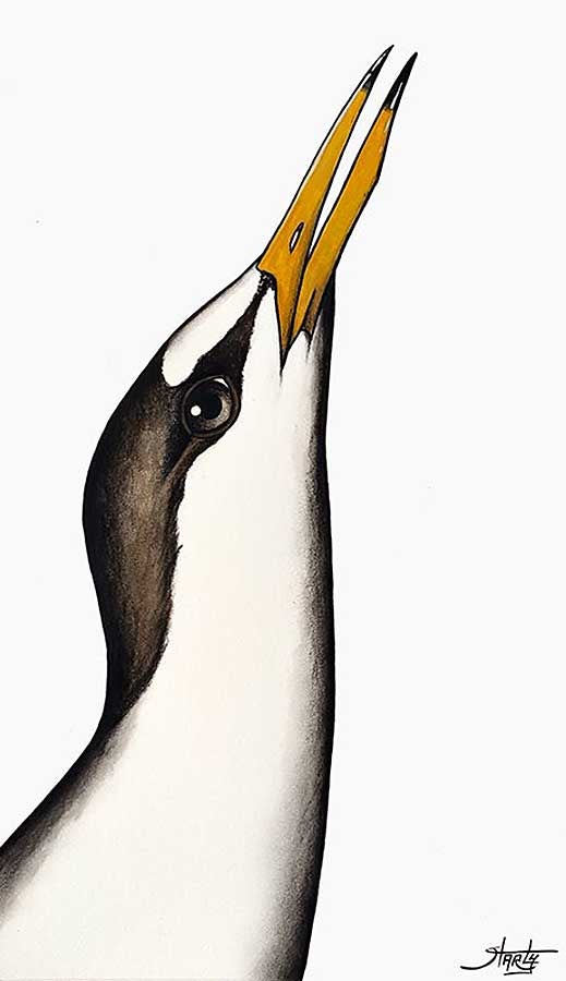 Image of CHARLY - 'LITTLE TERN' - ORIGINAL WATERCOLOUR PAINTING