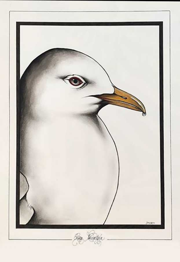 Image of CHARLY - 'KITTIWAKE' - ORIGINAL WATERCOLOUR PAINTING