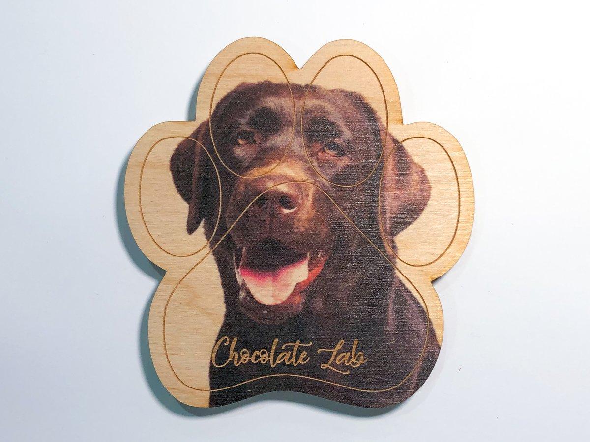 Image of Chocolate Lab Magnet