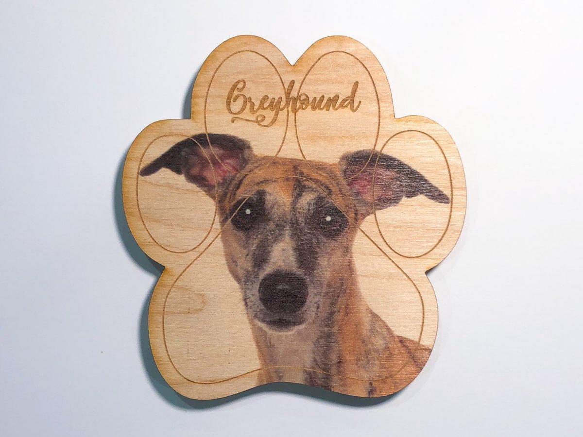 Image of Greyhound Magnet
