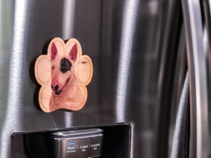 Image of Bull Terrier Magnet