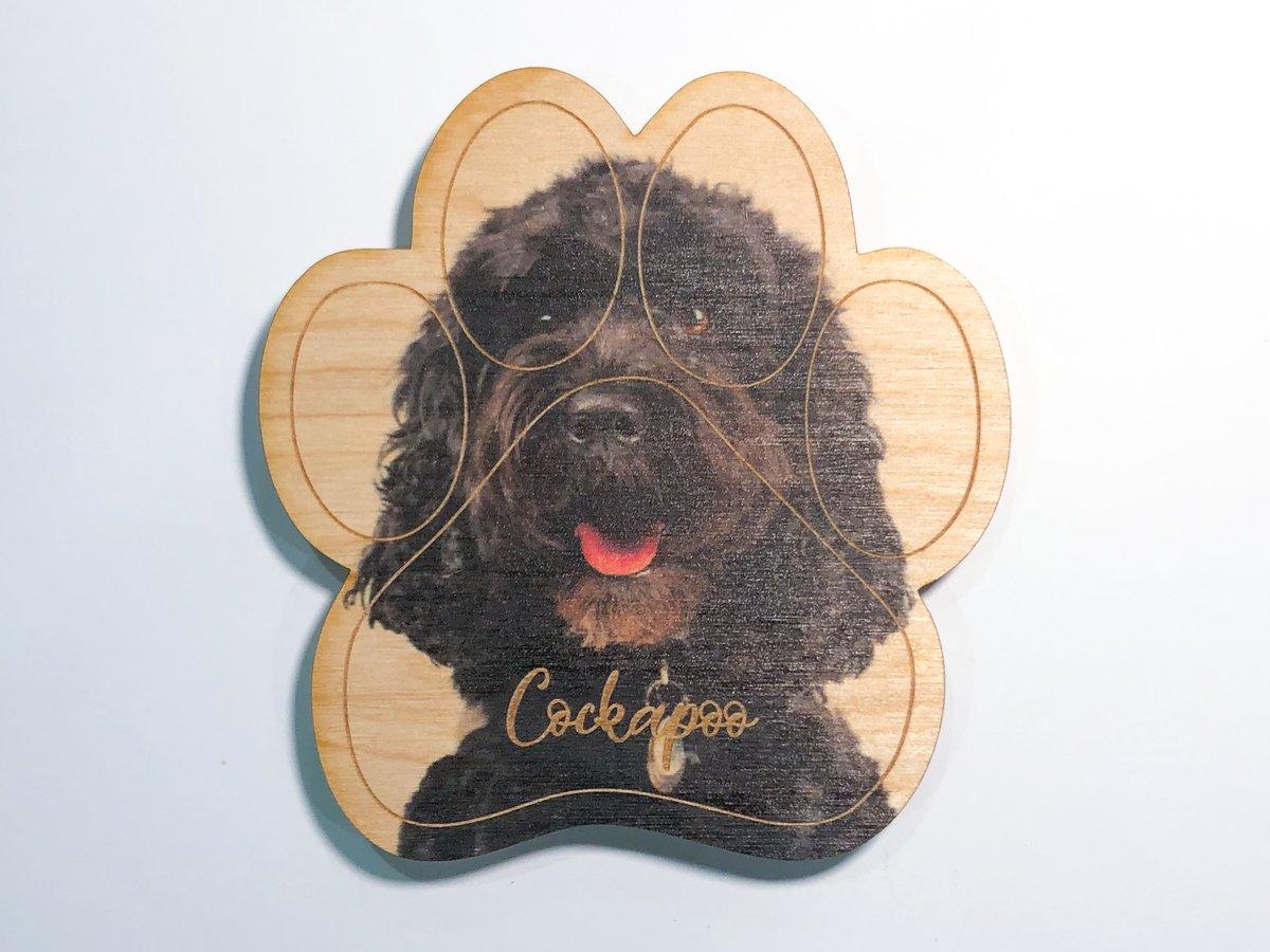 Image of Cockapoo Magnet
