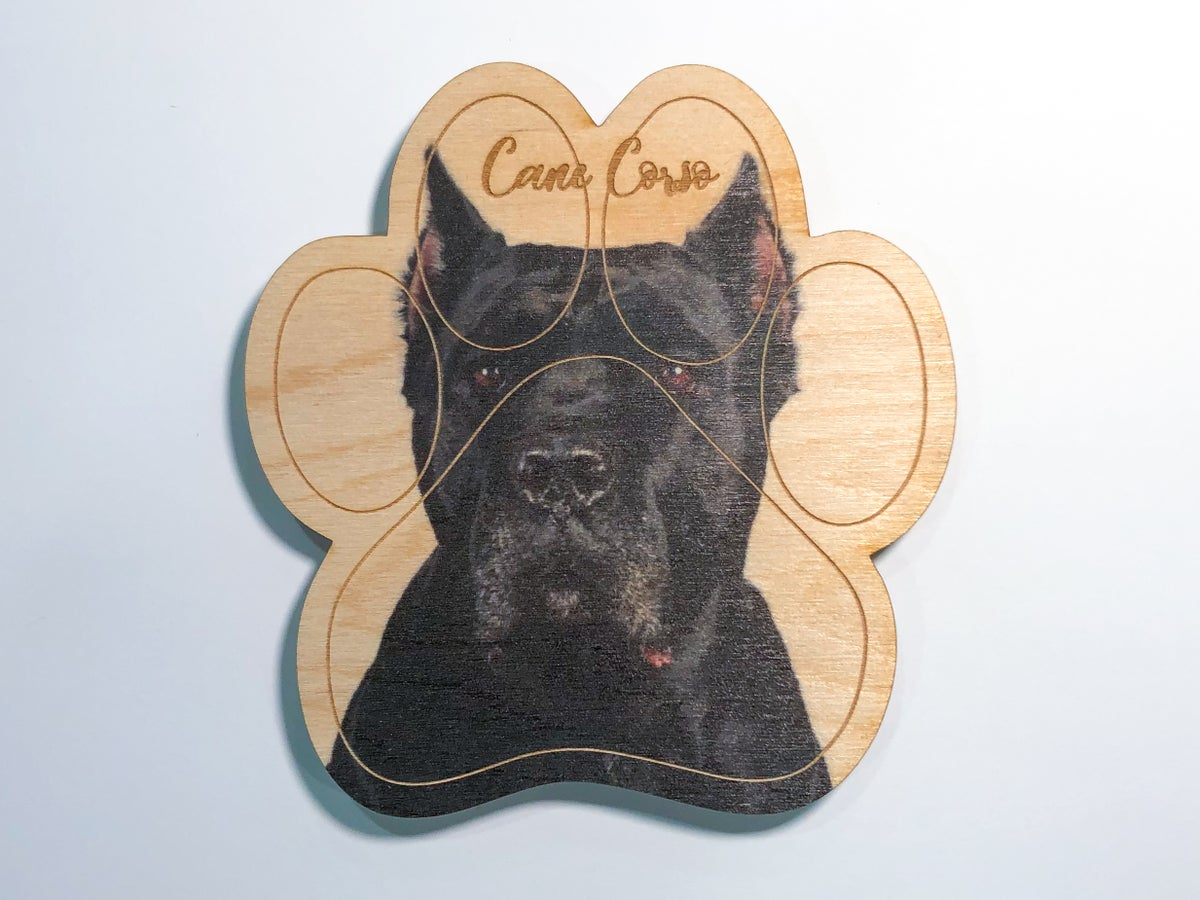 Image of Cane Corso Magnet
