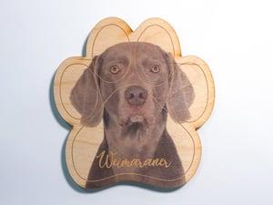 Image of Weimaraner Magnet