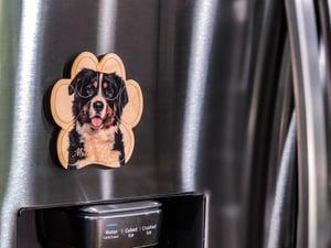 Image of Bernese Mountain Dog Magnet