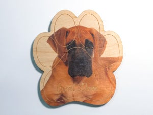 Image of Fawn Great Dane Magnet