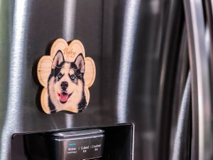 Image of Huskey Magnet