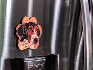Image of Treeing Walker Coonhound Magnet