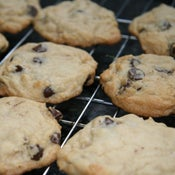 Image of Homemade Chocolate Chip Cookies