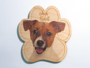 Image of Jack Russell Terrier Magnet