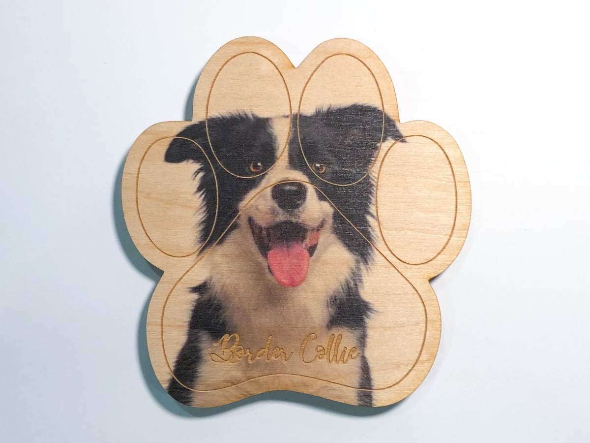 Image of Border Collie Magnet
