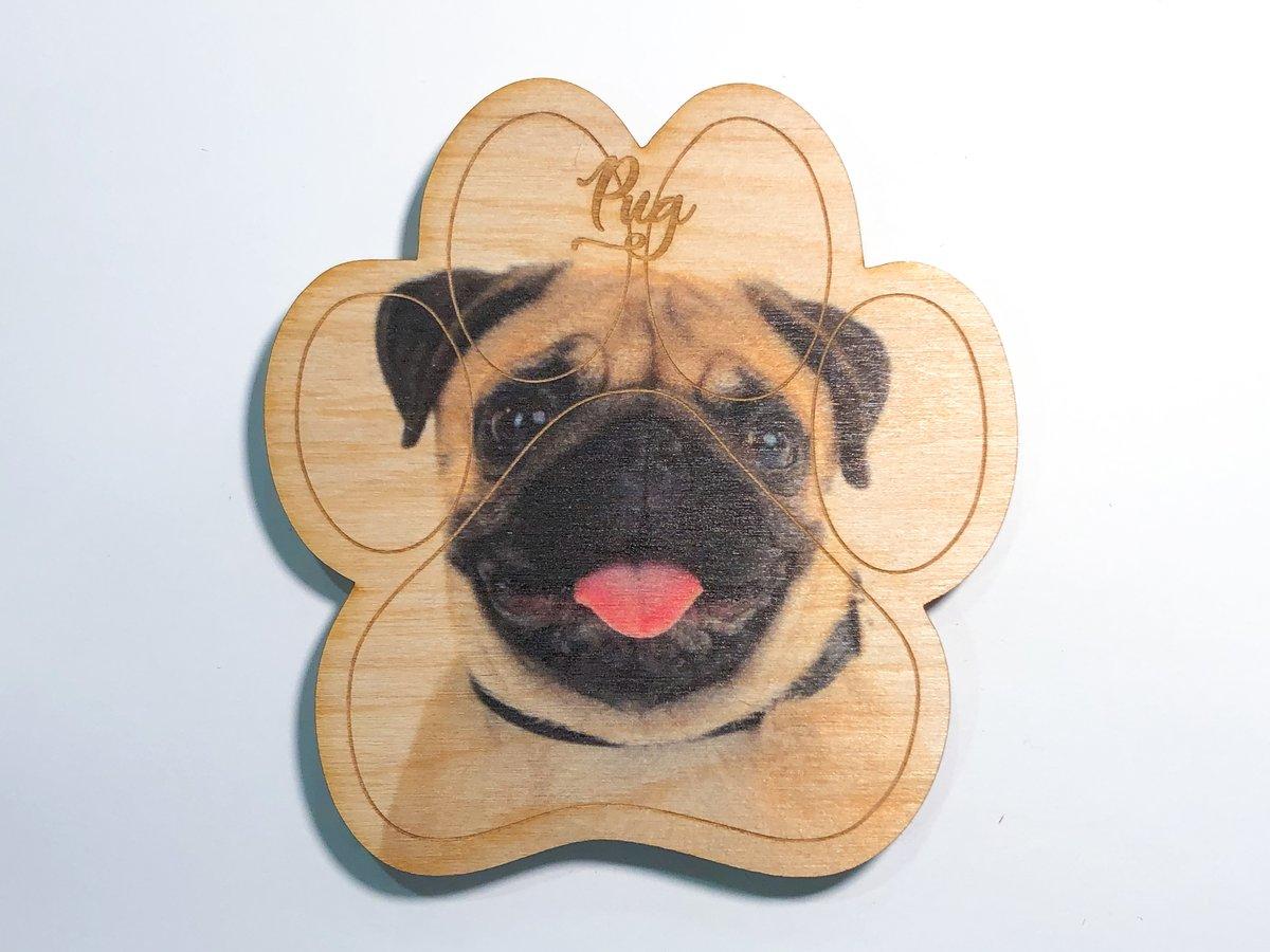 Image of Pug Magnet