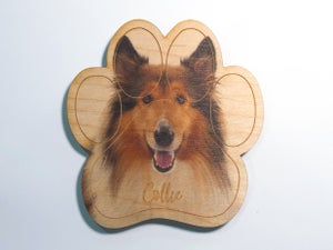 Image of Collie Magnet