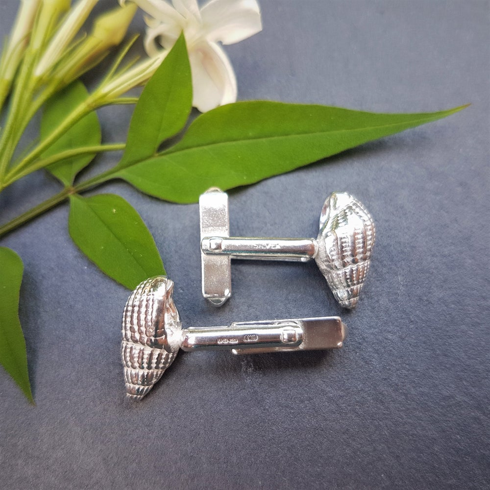 Image of Silver Shell Cufflinks