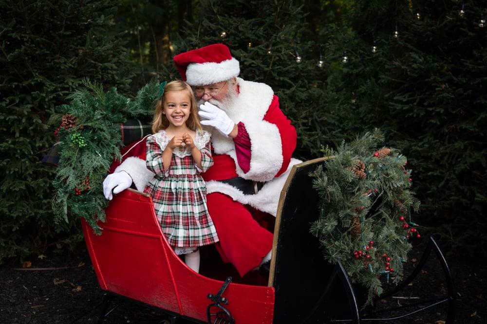 Image of Santa's Sleigh!!