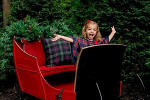 Image of Outdoor Christmas Sleigh!!
