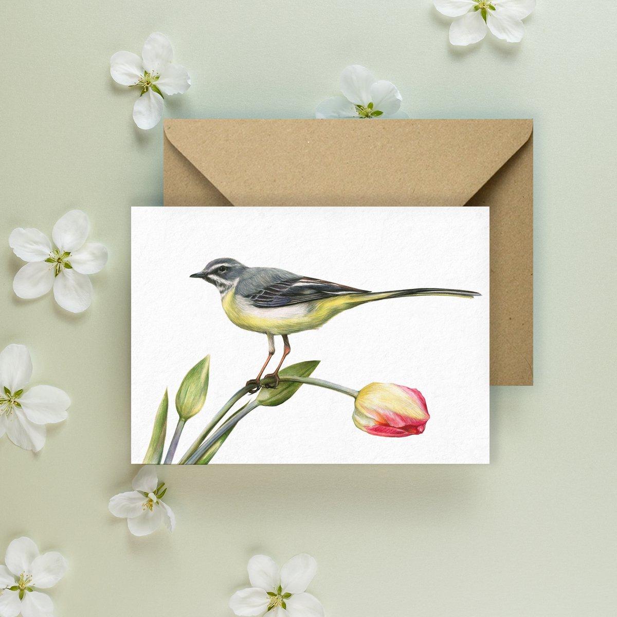 Image of 'Grey Wagtail' Greeting Card