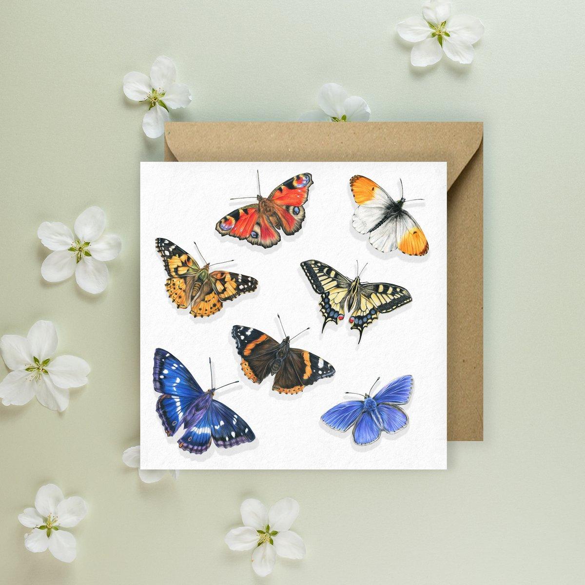 Image of 'Butterflies' Greeeting Card