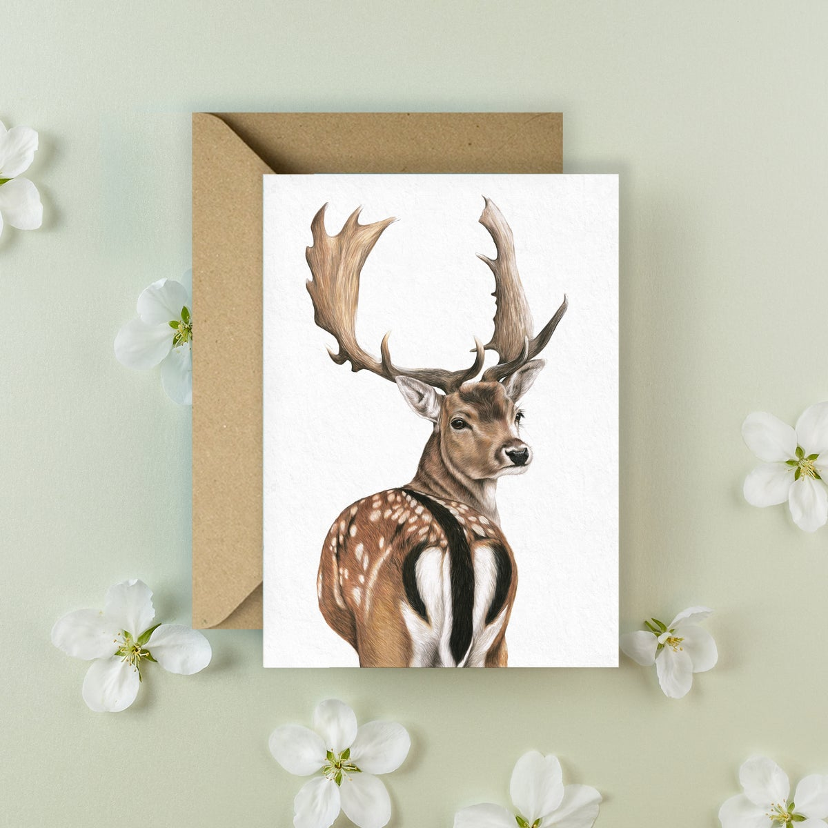 Image of 'Fallow Deer' Greeting Card