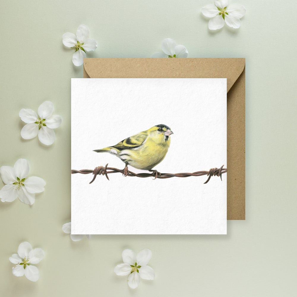 Image of 'Siskin' Greeting Card