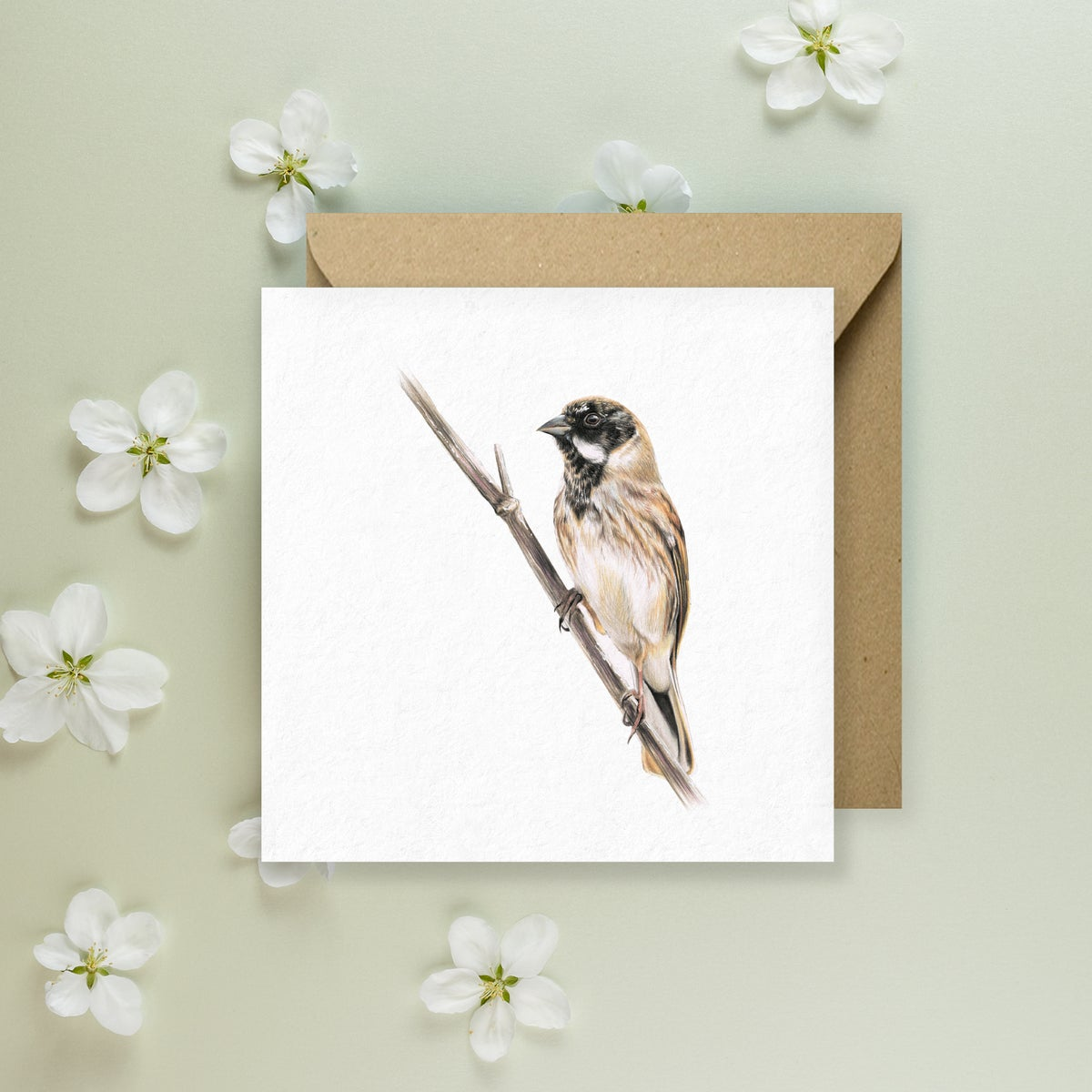 Image of 'Reed Bunting' Greeting Card