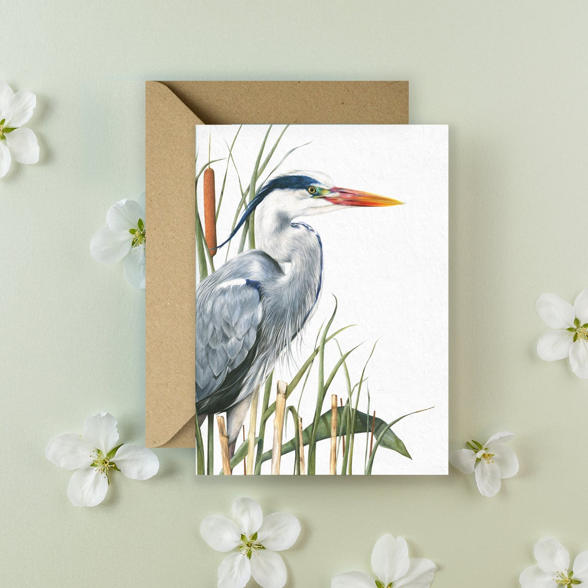 Image of 'Mr Grey' Greeting Card