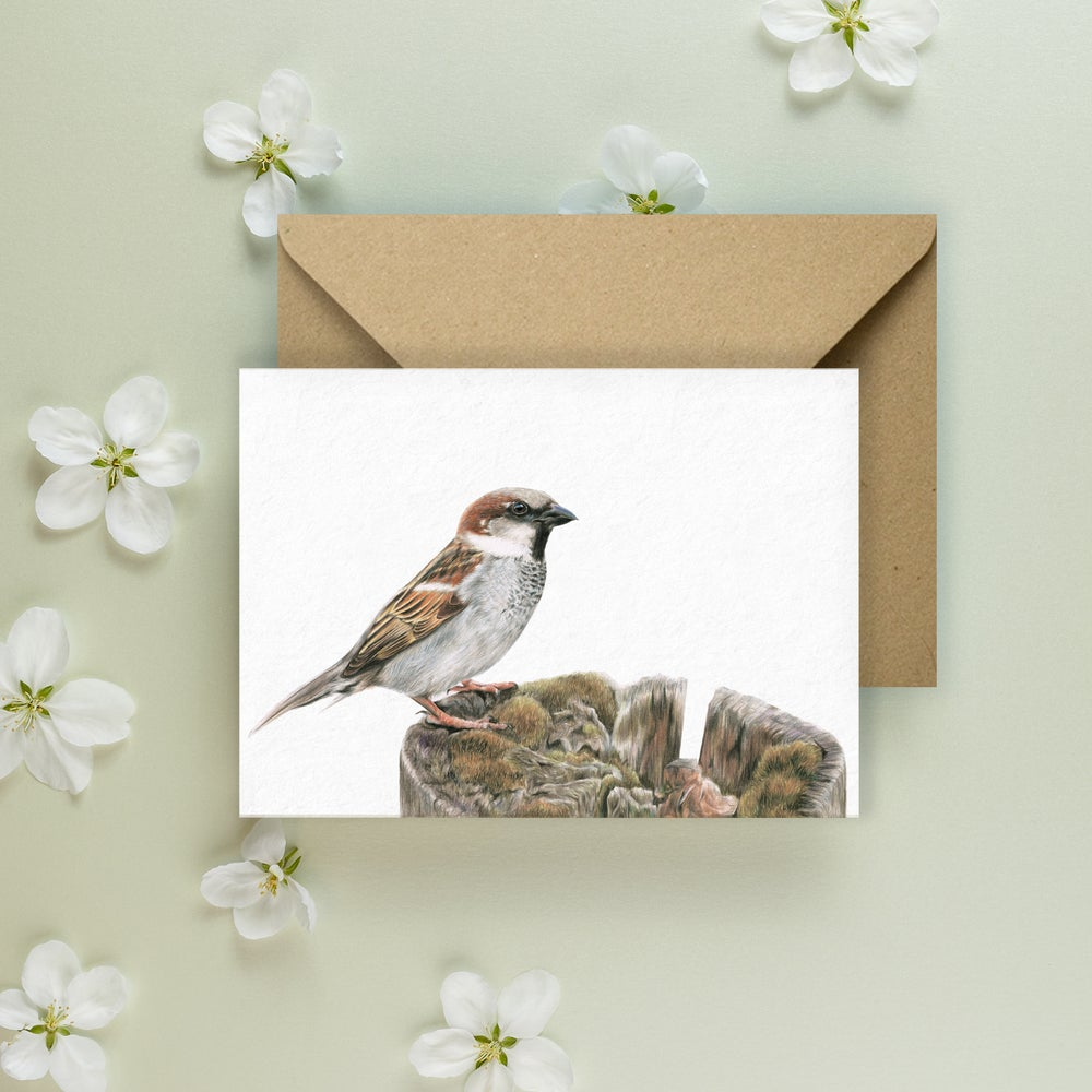 Image of 'House Sparrow' Greeting Card