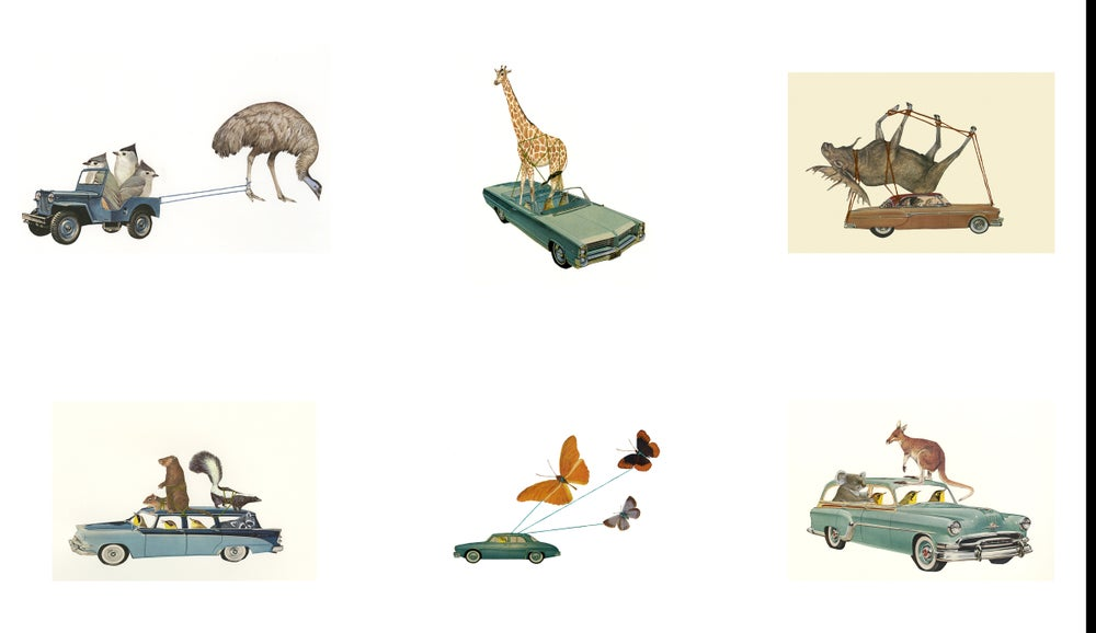 Image of Critter Collection greeting card set.