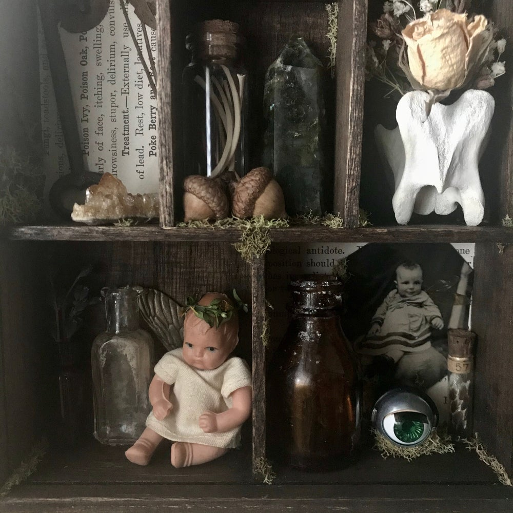 Image of fae cabinet