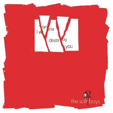 Image of The Soft Boys - I Wanna Destroy You / Near The Soft Boys (40th Anniversary Edition)