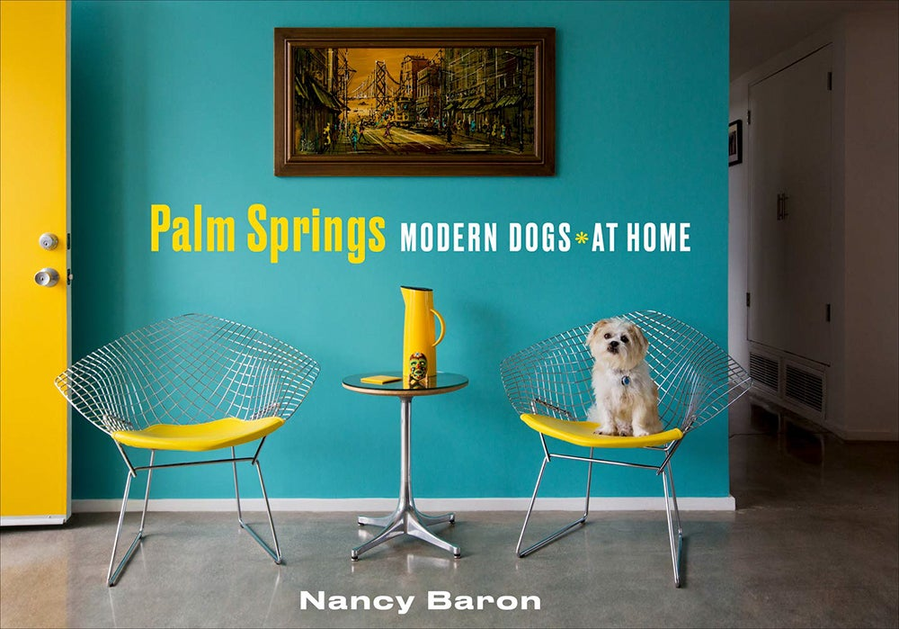 Image of Palm Springs Modern Dogs at Home