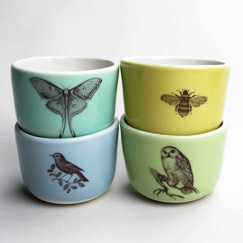 Image of set of four 8oz wee cups, birds and the bees