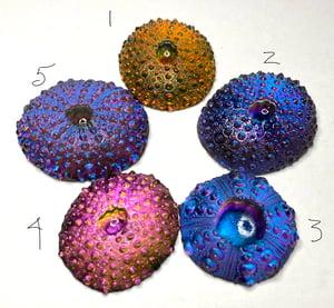Resin Glow Urchins ~5 of 'em 35mm