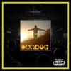 """Andrea Van Cleef - """"Sundog"""" CD"""