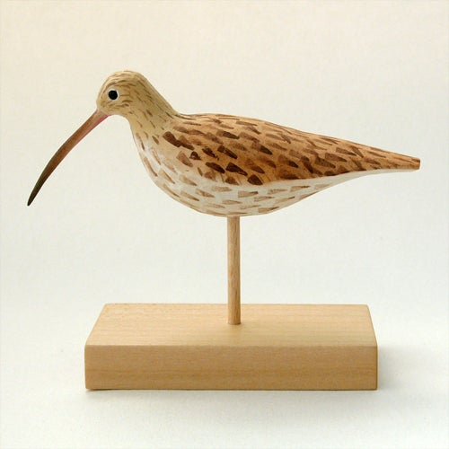 Image of Curlew
